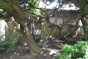 Remains of old toilet facilities at Mountsfield Park  close to where the Mountsfield Park cafe building stood before it was demolished in 1981 as a result of fire damage.