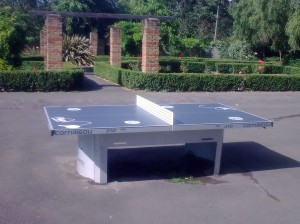 New table tennis table at Mountsfield Park