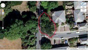 Redline surrounds TPO trees removed next to Mountsfield Park at 106 Stainton Road - Junction With Oakley Road 2013.
