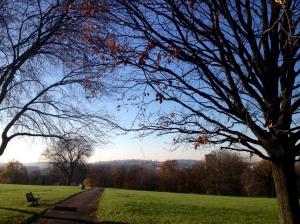Beautiful_day.JPG