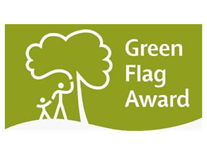 green_flag_image