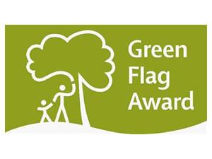 green_flag_image
