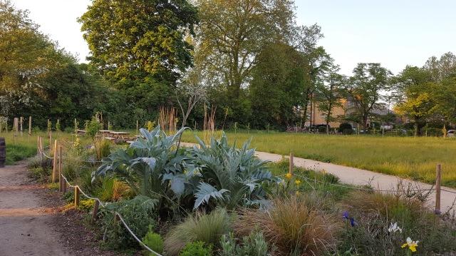 Mountsfield Park Community Garden 2016