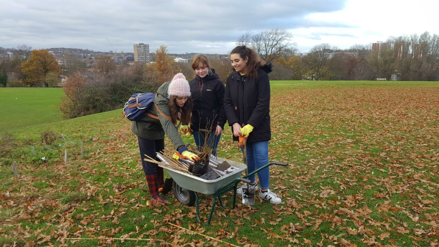 D od E Award volunteer tree planting at Mountsfield Park