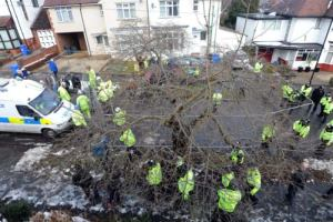 Communities objecting to tree felling