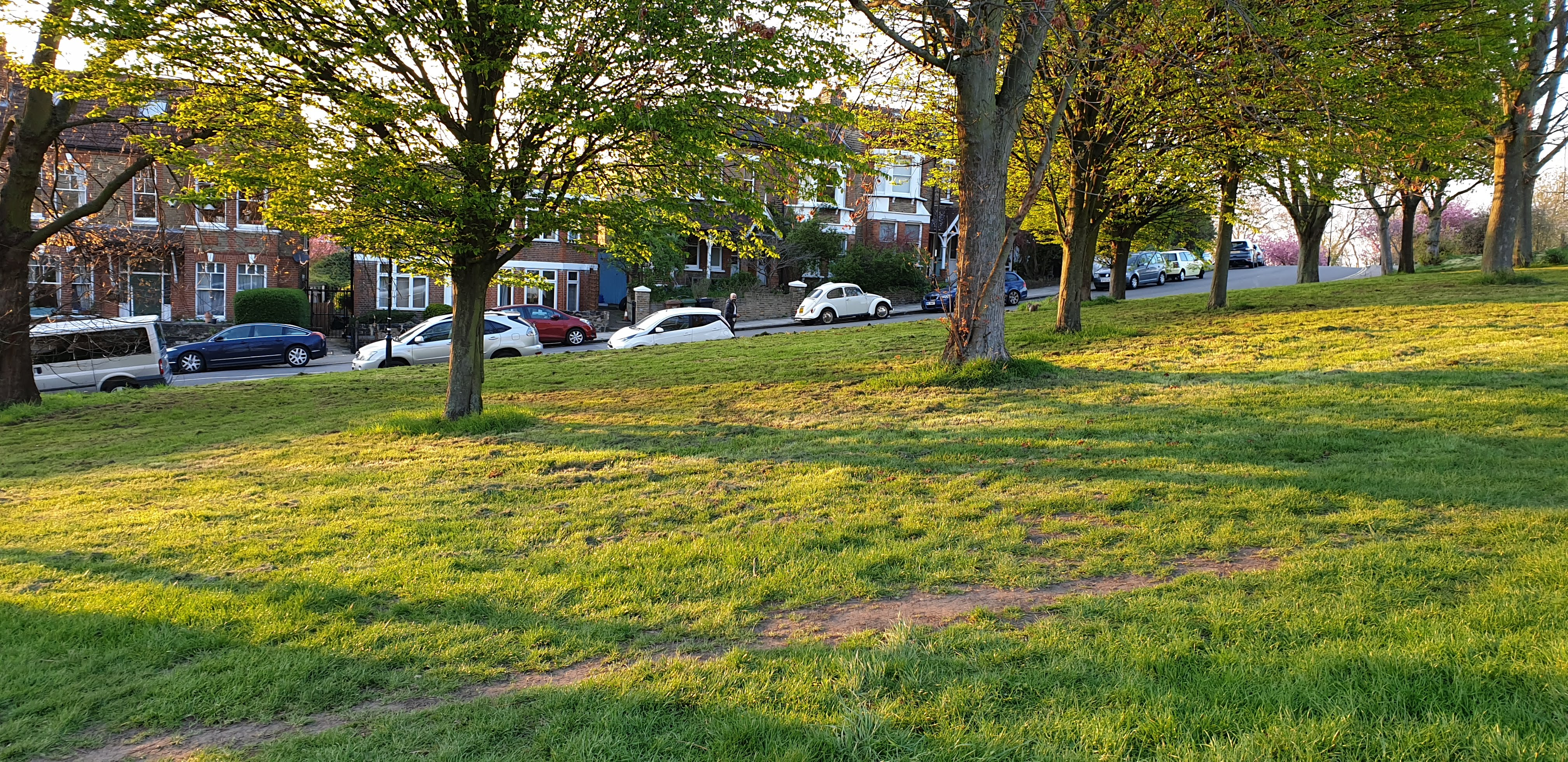 Hilly Fields, Lewisham April 2019 no grass mowing or strimming allowed near to tree stem to avoid damage to surface roots and bark. By agreement with Friends of Hilly Fields, Lewisham parks officers and the parks and open spaces contractor, Glendale.